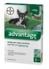 Advantage Cão 40 (até 4 Kgs) Verde - 4 Pip.